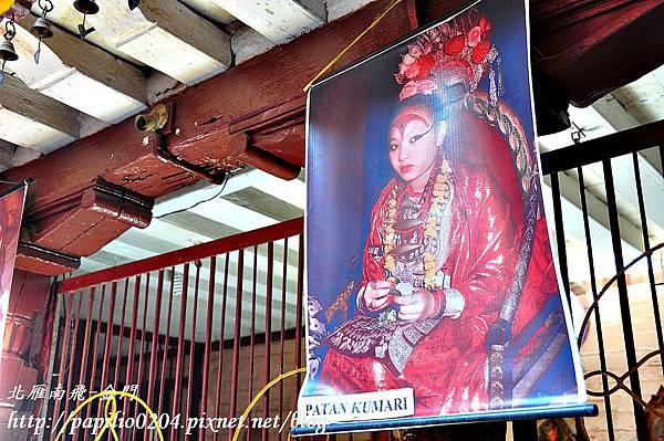 帕坦古都(Patan)黃金寺廟(Golden Temple)中的活女神照片