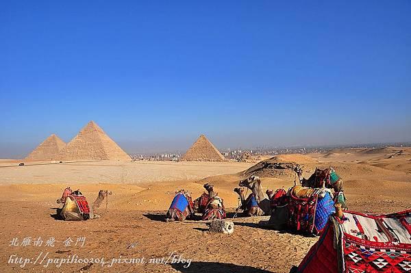 從騎駱駝處遠望三大金字塔