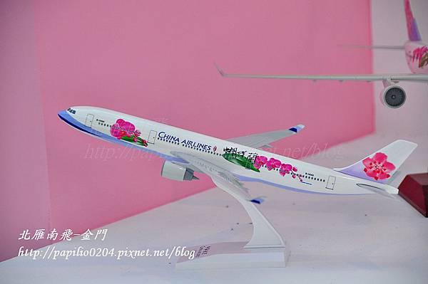 蘭花故事館中以蝴蝶蘭塗裝的飛機