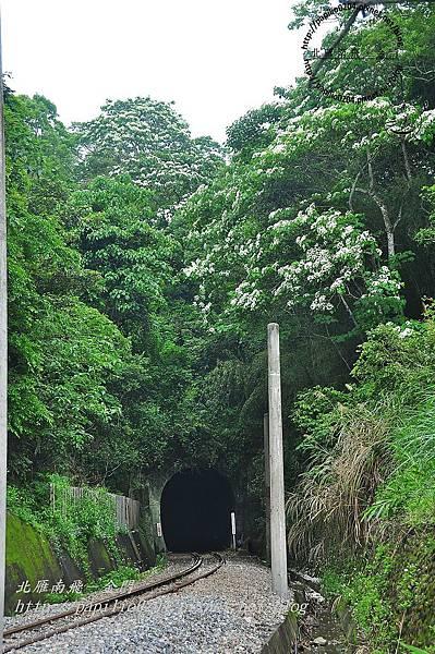 舊山線鐵道勝興二號隧道口
