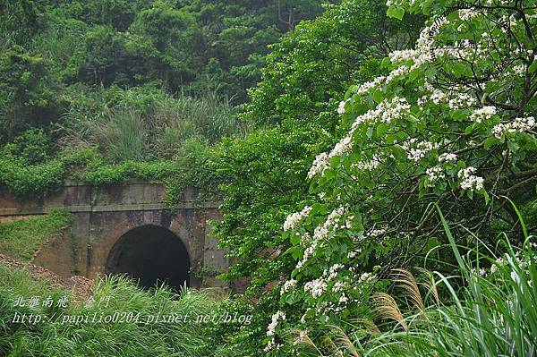 舊山線鐵道一號隧道旁
