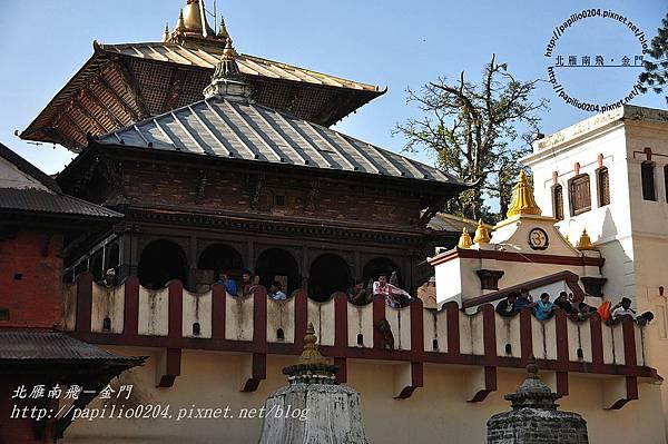 帕素帕蒂納廟(Pashupatinath)-2