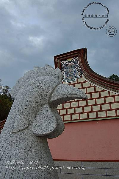 上林白雞(風雞)2007/01/15