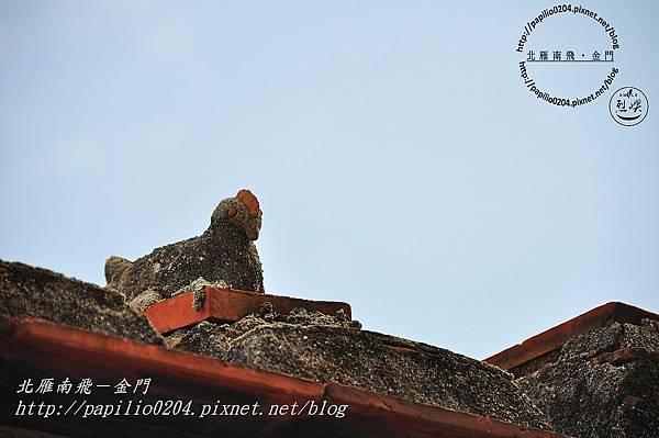 東林屋脊白雞(風雞) IV