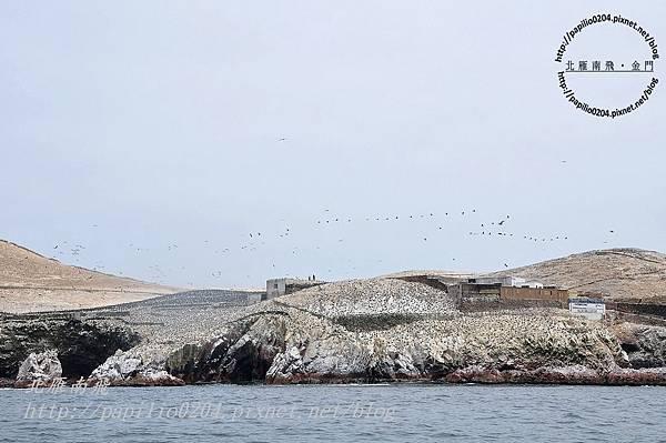 從東島(isla este)遠望北島(isla norte)上的鳥群與研究站