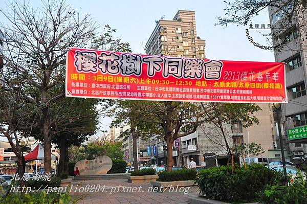 太原賞櫻廊道-太原四街至太原六街段