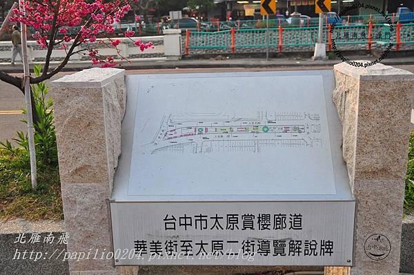 太原賞櫻廊道-華美街至太原二街解說牌