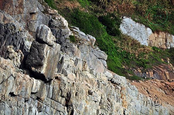 清水澳中的奇石
