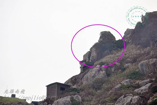 安東坑道射擊口遠望獅子回眸沙奇岩