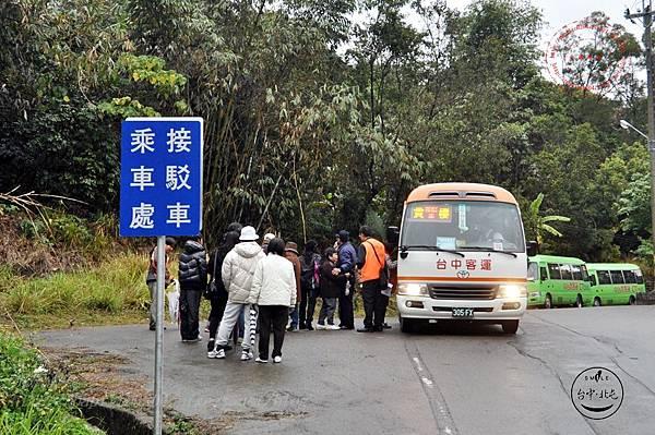 33 2014大坑濁水巷櫻花林接駁車乘車處.JPG