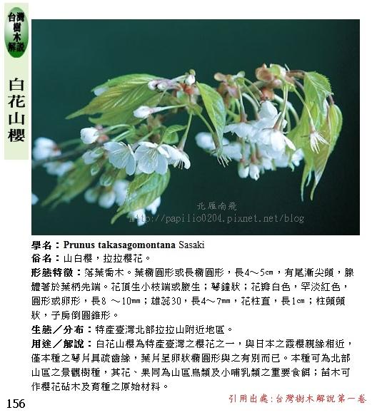 台灣樹木誌白花山櫻