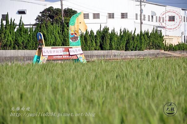 03  2014 麥浪季大雅驫麥趣活動大木馬.JPG