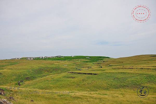 20西嶼坪的大草原.JPG