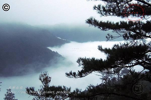 大雪山森林遊樂區往雪山神木林道雲海