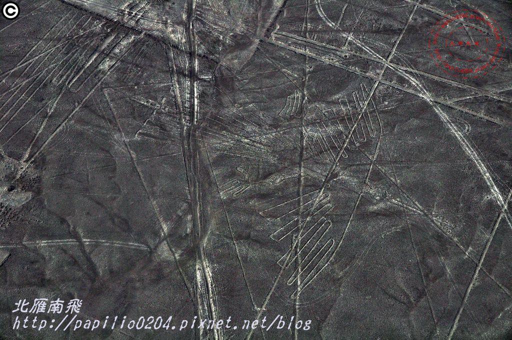 [秘魯]納斯卡線(Nazca lines )