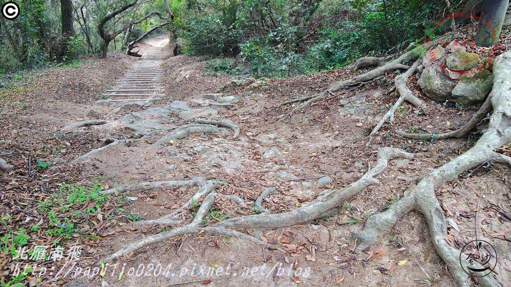 五虎山登山步道山西段(登山口)