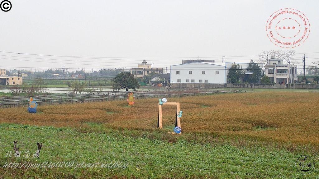 2016幽浮麥樂文化季外埔區三崁里小麥田-002.JPG