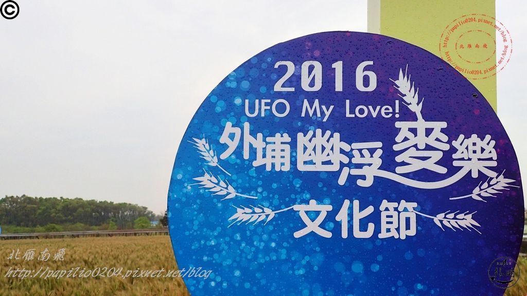 062016幽浮麥樂文化季外埔區三崁里小麥田.JPG
