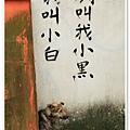 2011208_0015.jpg