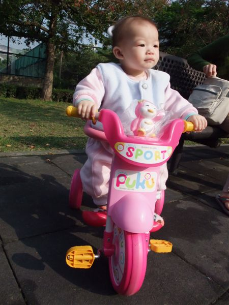 愛駒小粉紅