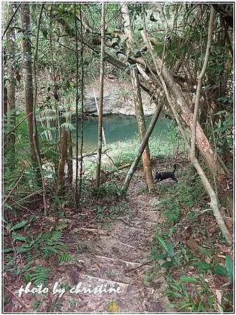 【水上瀑布】道路風景16.JPG