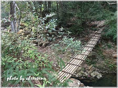 【水上瀑布】道路獨木橋15.JPG