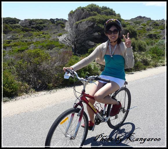 騎車環島吧