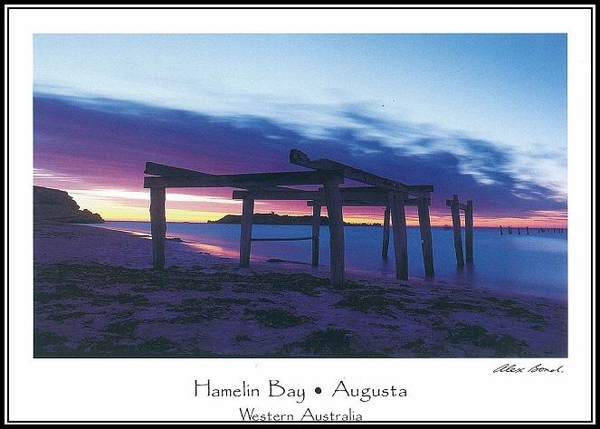 Hamelin Bay by Alex-4