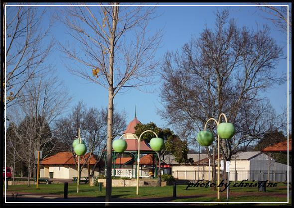Donnybrook 路邊青蘋果路燈