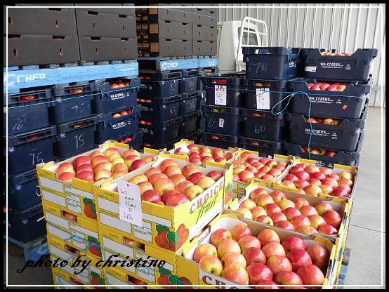 Donnybrook 蘋果包裝場