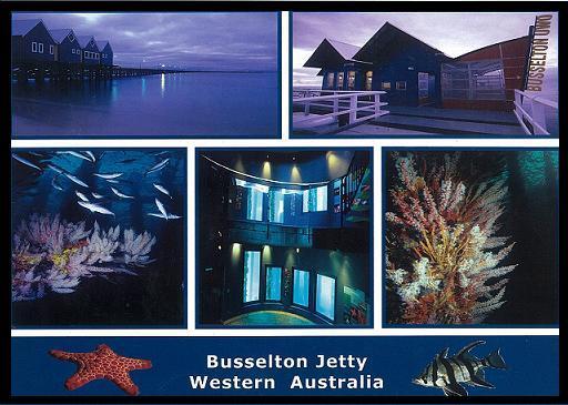 Busselton Jetty 末端的海底觀察站