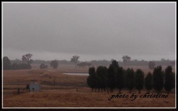 清晨充滿霧氣的農場