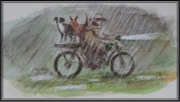 【A YEAR ON OUR FARM】Working dogs love on motor bike.