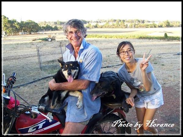 農場主人ㄉ牧羊犬 Jessie & Bunny
