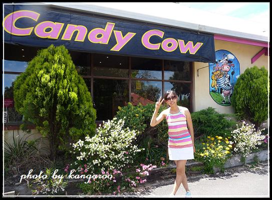 【The Candy Cow】 店門