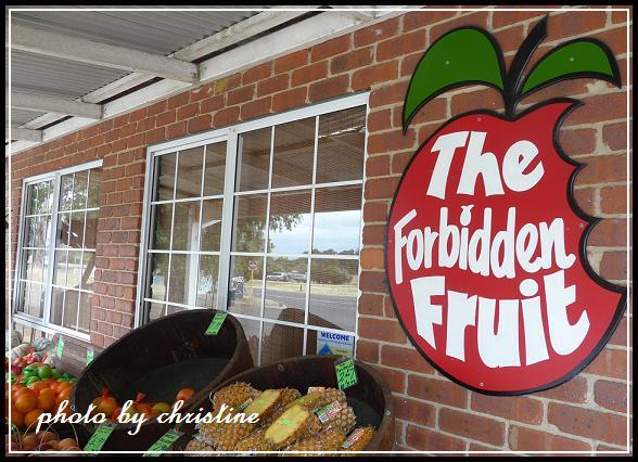 【The Forbidden Fruit Store】on Highway 1