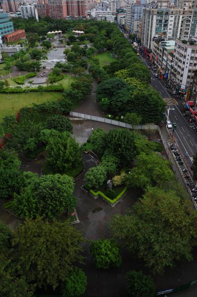 四號公園將被剷除的樹叢