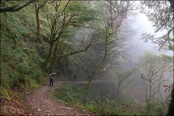 2013-0214-085015-檜山巨木森林步道