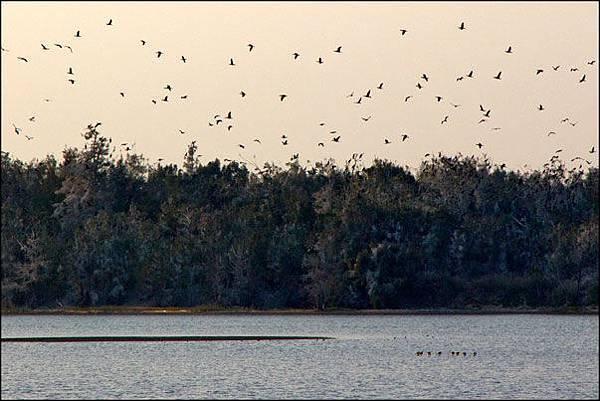 2013-0119-170347-慈湖