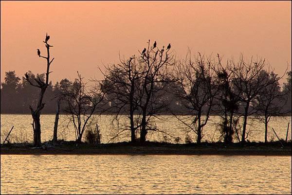 2013-0119-173153-慈湖