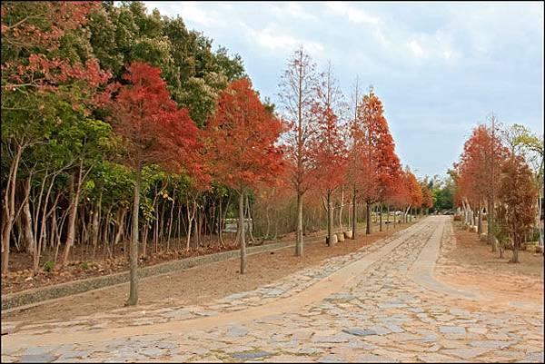 2013-0120-175540-金門縣林務所