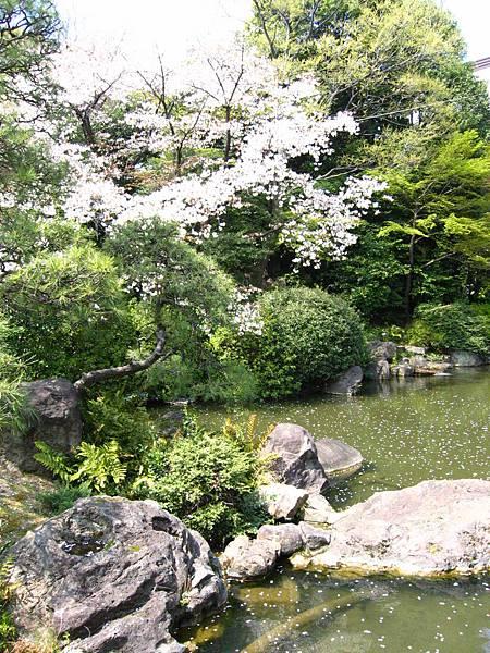 2008 東京春遊 029