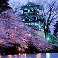 日本(Japan)如詩如畫的賞櫻美景