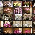 蘭花盆栽 花圈花籃 代客送花