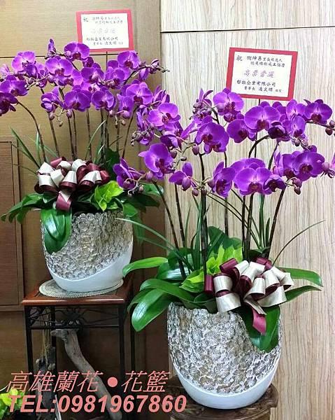 0527 蘭花盆栽 $4000