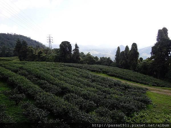 20120715貓蘭山步道_0036_調整大小