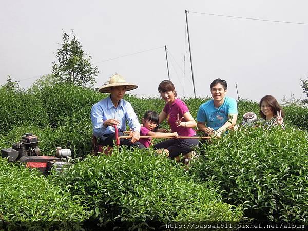 20130629南投鹿谷大崙山杉雲農場_0283.jpg