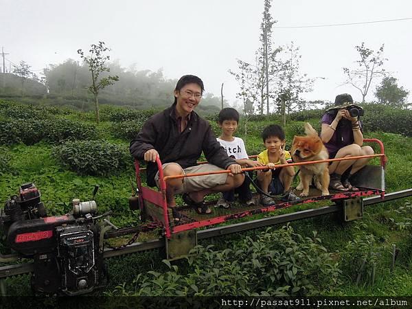 20130629南投鹿谷大崙山杉雲農場_0323.jpg