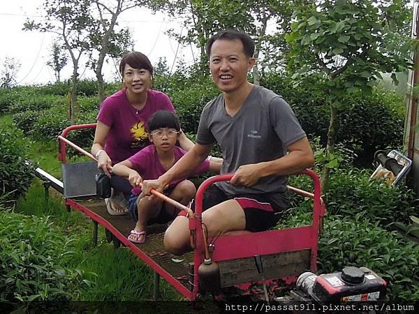 20130629南投鹿谷大崙山杉雲農場_0342.jpg