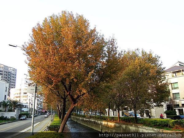 20140106台中楓樹社區_0078_調整大小.jpg
